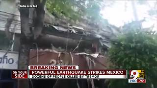 Powerful earthquake strikes Mexico - Video