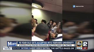 16-year-old accepted into Harvard - Video