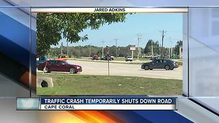 Traffic Crash Temporarily Shuts Down Road - Video