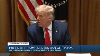 Michiganders react to President Trump's order banning TikTok, WeChat in 45 days