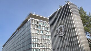 World Health Assembly Convenes Online Monday
