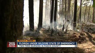 Two brush fires in Pasco continue to smolder - Video