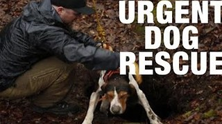 Rescue Squad Saves Dog Trapped Down 30-Foot Hole - Video