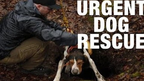 Rescue Squad Saves Dog Trapped Down 30-Foot Hole