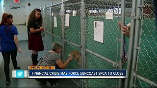 Suncoast SPCA to close - Video