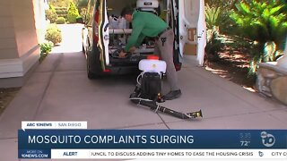 Mosquito complaints surging in Del Mar