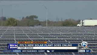 Florida Power and Light's new solar plant in Fort Pierce goes online