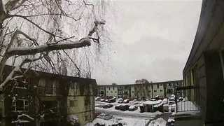 Timelapse Video Shows 'Snowpocalypse' in Vancouver - Video