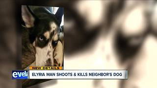 Elyria man charged with animal cruelty after allegedly shooting dog that attacked his puppy - Video