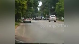Mugabe motorcade 'enters State House' - Video
