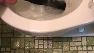 Brave Man Pulls Yet Another Snake From His Elderly Neighbor's Toilet - Video