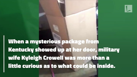 Mom Finds 'Bomb' in Mysterious Package, Cops Smirk as They Tell Her It's Dryer Motor