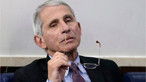 Dr. Fauci: COVID-19 May Have Mutated To Be More Infectious
