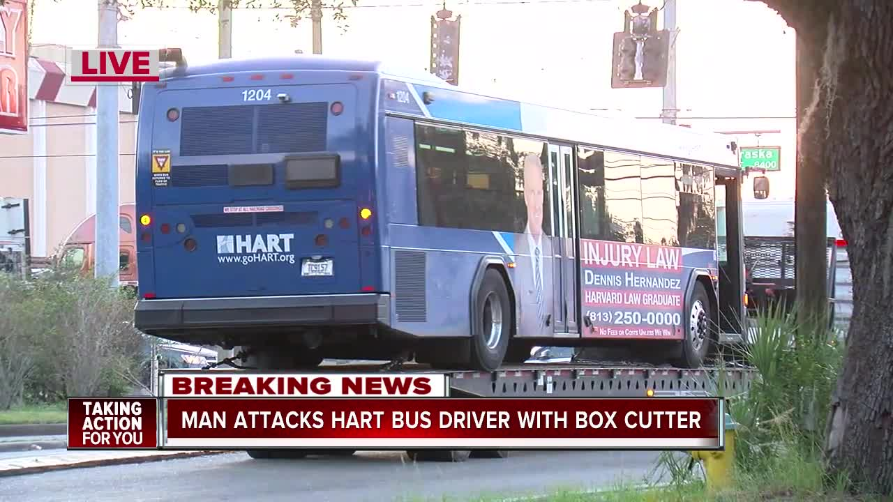 Man attacks HART bus driver with box cutter