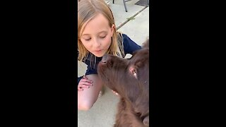 Watch tis little girl voraciously defends dog... again!