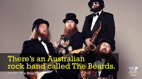 There's A Band Called 'The Beards' And Their Songs About Beards Is Hilarious