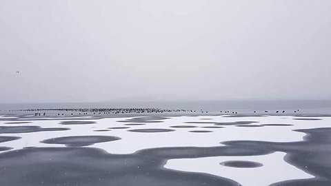 Its snow joke: Guess the frozen country hit by record low temperatures