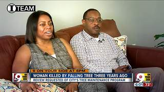 Can family find justice after tree killed mom? - Video