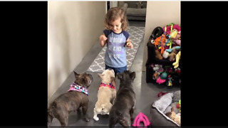 Little Girl Is Mini Dog Whisperer To Her Three Dogs