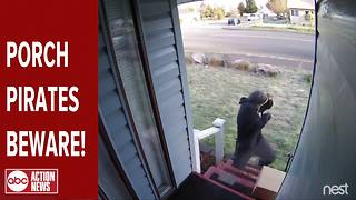"Exploding ""Blank Box"" scares away porch pirates by using a decoy box"