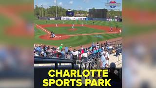 Tampa Bay Rays 2018 Spring Training | Taste and See Tampa Bay - Video