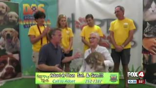 Collier County DAS Adopt-a-Thon - Video