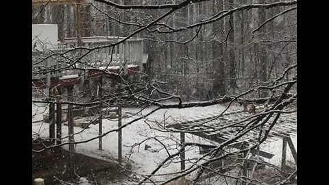 Snow Covers Fairfax County With Blanket of White