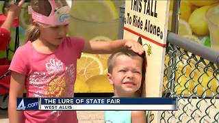 Wisconsinites share their favorite thing about the State Fair
