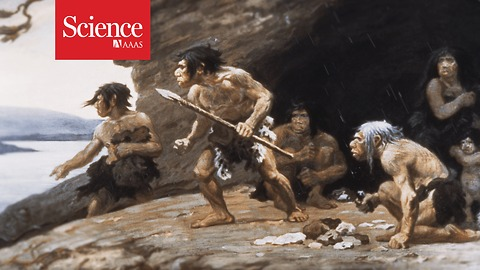Neanderthals used their hands like tailors and painters