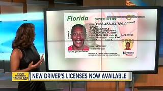 Florida's new driver licenses rolling out at 12 Bay Area DMV locations - Video