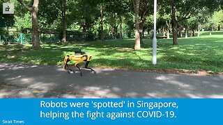 A robot dog is telling people to keep their distance during the pandemic