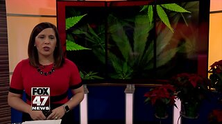 Lansing prepares for recreational marijuana retail