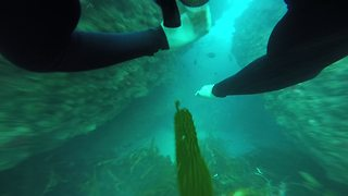 POV footage captures intensity of underwater cave diving