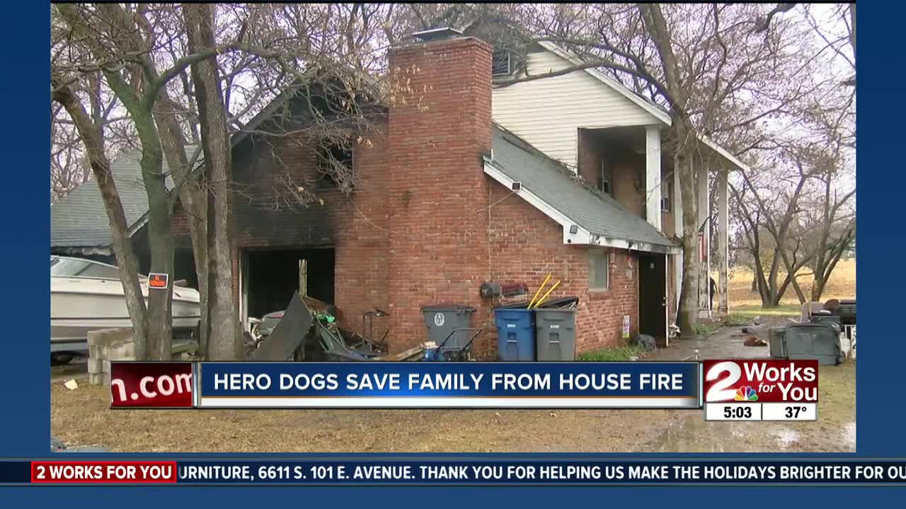 Dogs save family from house fire