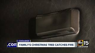 Coolidge family's christmas tree catches fire - Video