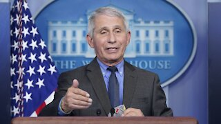 Fauci: 'Unlikely' U.S. Will See Fall, Winter Surge