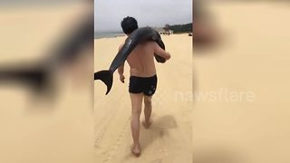 Tourist snatches live dolphin from beach, carries it over his shoulder - Video
