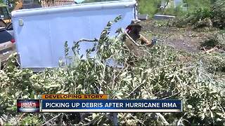 Picking up debris after Hurricane Irma