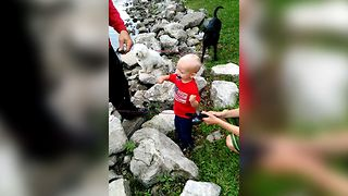Baby Is A Pro Fisher - Video