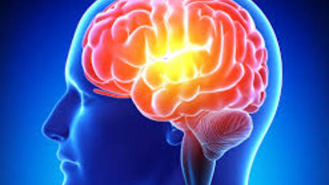 Top 10 foods to improve your memory