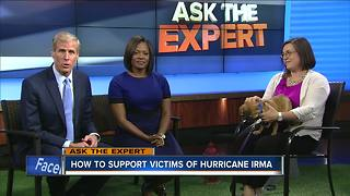 Ask the expert: Support of pet victims of hurricanes - Video