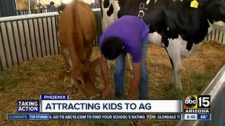 Arizona State Fair: Youth Week begins Monday - Video
