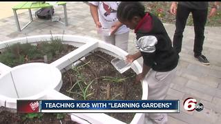 Kids taught sustainable living with