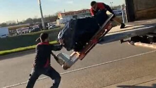 Delivery goes horribly wrong