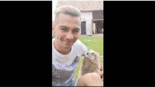 Baby Owl Runs To Owner When Called - Video