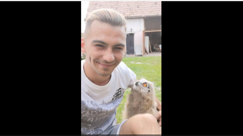 Baby Owl Runs To Owner When Called