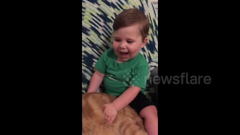'This cat is chonky!' Adorable US baby calls his kitty fat