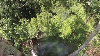 Florida Man Takes 60-Foot Plunge From Tree Into River - Video