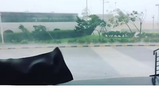Deadly Cyclone Brings Severe Winds to Chennai - Video