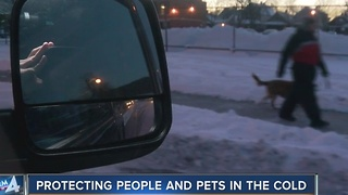 Remember your pets during freezing conditions